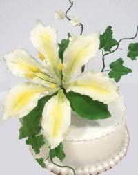 סדנאות וקורסים בבצק סוכר פיסול פרחים