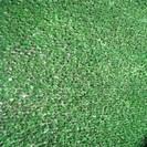 """דשא סינטטי לבד 10 מ""""מ."""