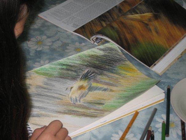 חוג ציור לילדים בצפון