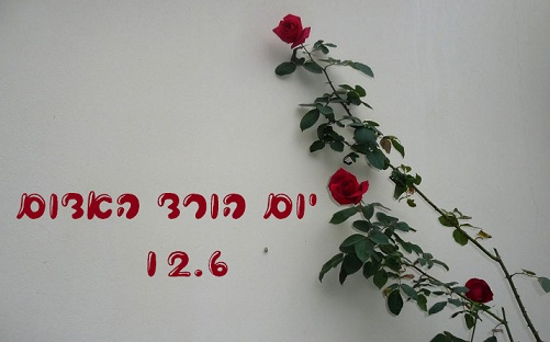 יום הורד האדום- 12.6