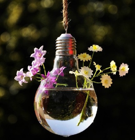עציץ מנורה