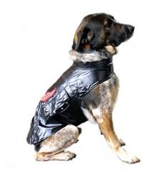 תחפושת לכלב אופנוען