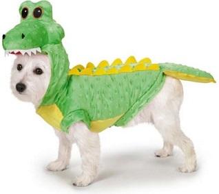 תחפושת כלב תנין