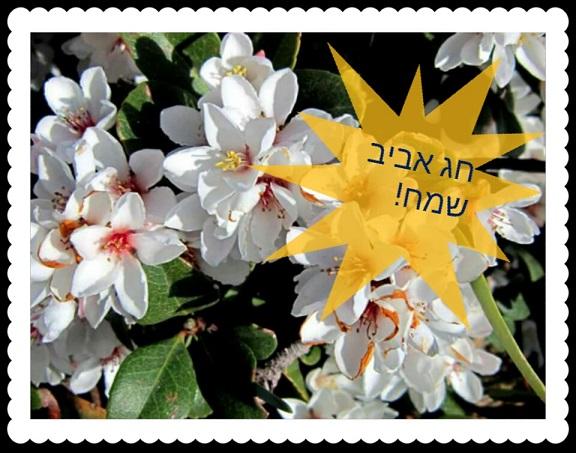 חג אביב שמח פרחים