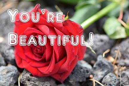 מחמאה- YOU'RE BEAUTIFUL