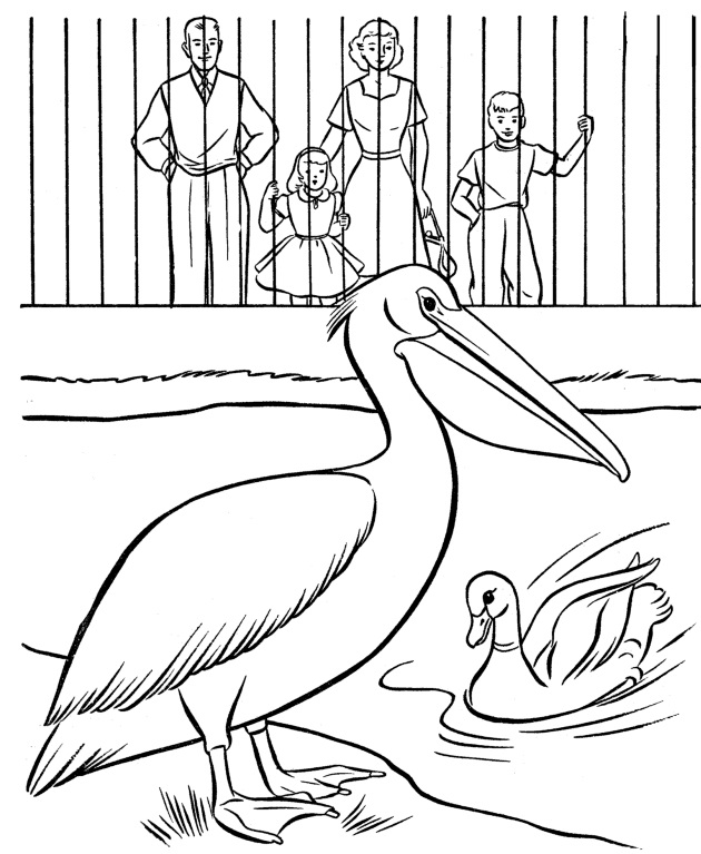 דף צביעה גן חיות