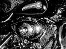 פסטיבל הארלי דייוידסון - Harley Days
