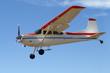 טיסה בשמי הארץ