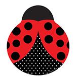ליידי חיפושית
