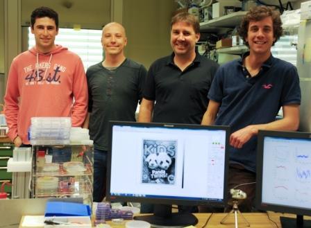 הצוות מ- IBM