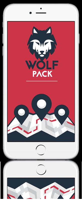 מסך WolfPaCK