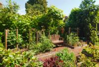 הקמת גינות מעוצבות בסגנון גן בוטני