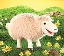 כיבשה  ענקית - כבשה 2406