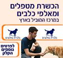 הכשרת מטפלים בעזרת כלבים