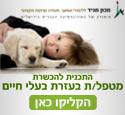 לימודים טיפול בעזרת בעלי חיים