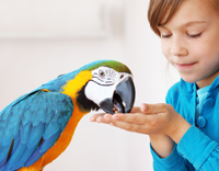 למי מיועד הטיפול בעזרת בעלי חיים - ילדה עם תוכי