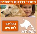 לימודי כלבנות טיפולית - My Dog