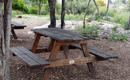 אשפה בפארק - מאת: חוה מיטלמן
