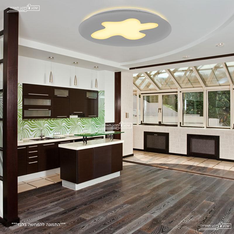 גוף תאורה צמוד תקרה לסלון צורה אמורפית