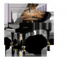 פסנתר כנף שימל SCHIMMEL K219 Tradition
