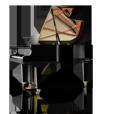 פסנתר כנף שימל  SCHIMMEL C189  Tradition