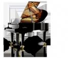 פסנתר כנף  שימל  SCHIMMEL K195 Tradition