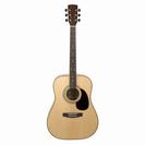 גיטרה אקוסטית קורט  CORT AD880 NS