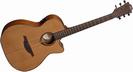 גיטרה אקוסטית לג מוגברת LAG T200ACE