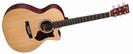 גיטרה אקוסטית מוגברת מרטין  MARTIN GPCPA4 SAPELE