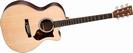 גיטרה אקוסטית מוגברת מרטין  MARTIN GPCPA4 SIRIS