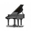 פסנתר כנף RINGWAY GDP6300 BK