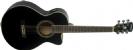 גיטרה אקוסטית וושבורן WASHBURN  EA10B