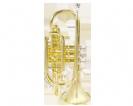קורנית (GOLDEN CUP JHCT1408 cornet(with triggers,lacquer