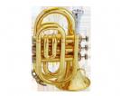 חצוצרה (GOLDEN CUP JHPT1406 Pocket trumpet(lacquer
