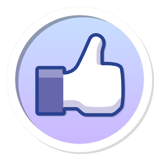 פייסבוק ווידג'ט