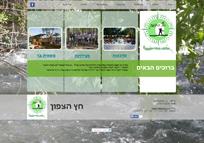 example-3-new